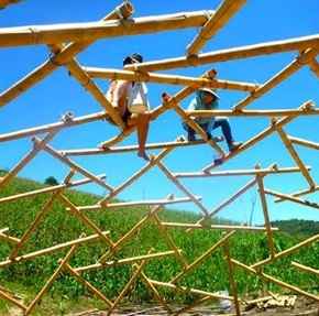 Costruiamo una cupola geodetica inbambù!